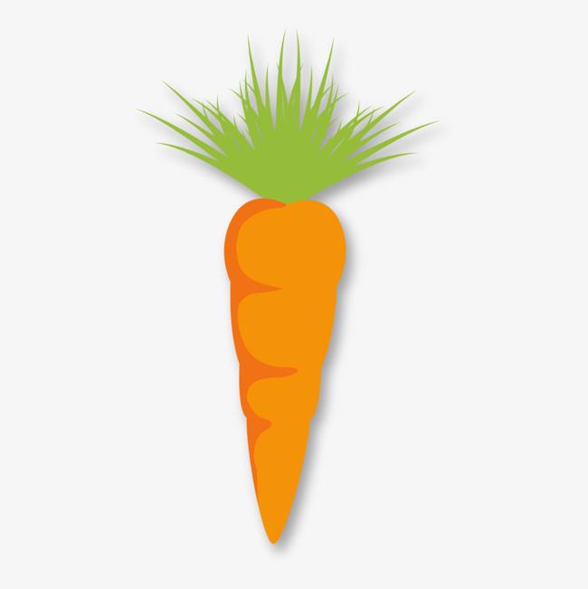 手绘食物胡萝卜