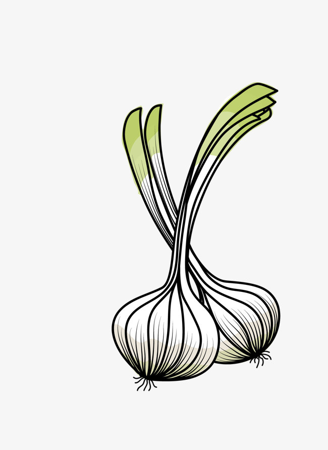 矢量卡通手绘蔬菜大蒜png图片