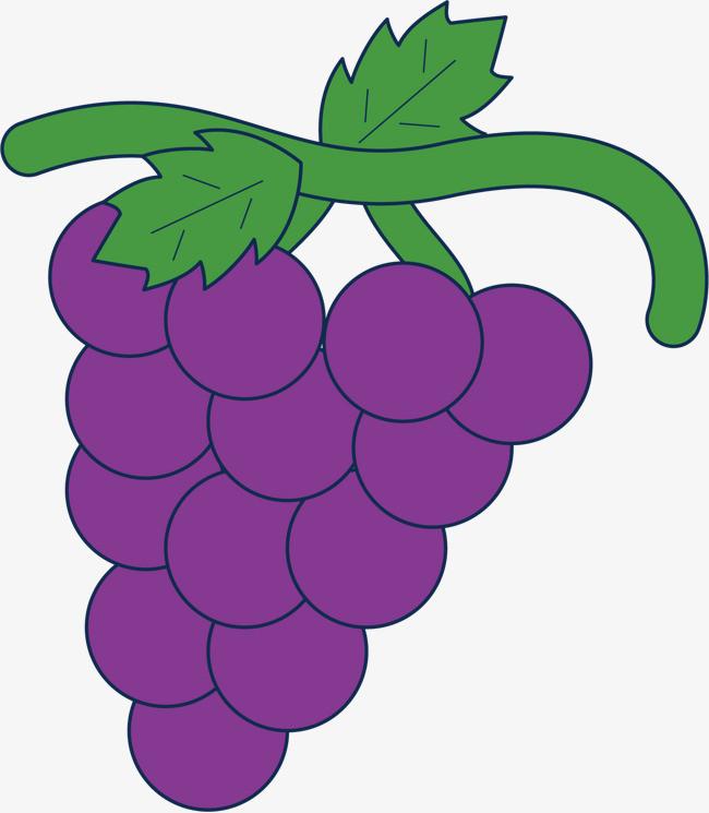 可爱卡通手绘 水果 葡萄