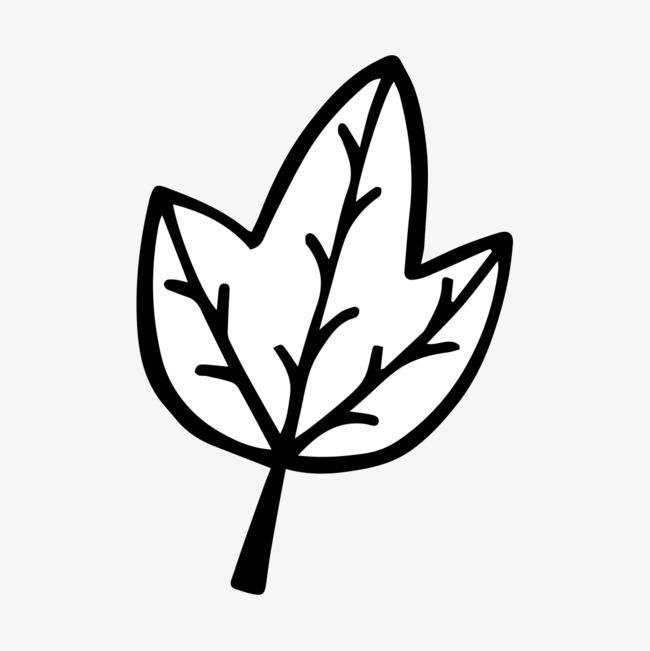 图片 手绘卡通 > 【png】 手绘树叶  分类:装饰元素 类目:其他 格式