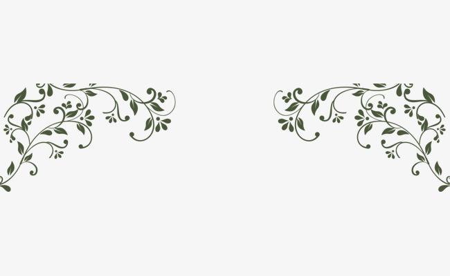 手绘绿色藤蔓叶子