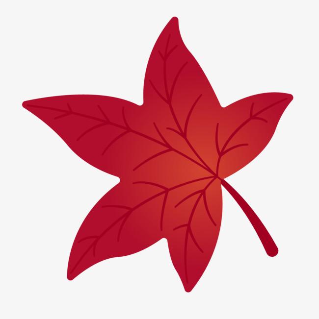 手绘红色枫叶