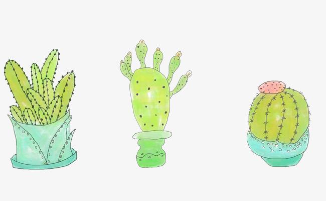 手绘仙人掌小清新植物