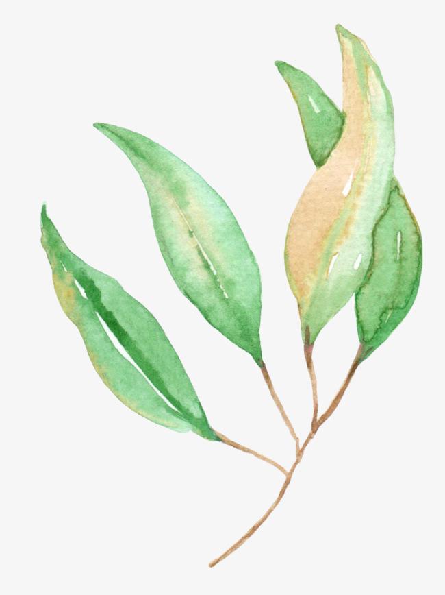 90设计提供高清png手绘动漫素材免费下载,本次绿色水彩树叶作品为设计