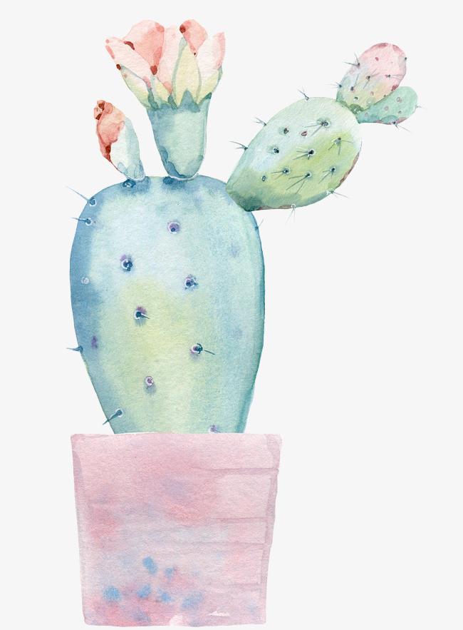手绘水彩盆栽仙人掌