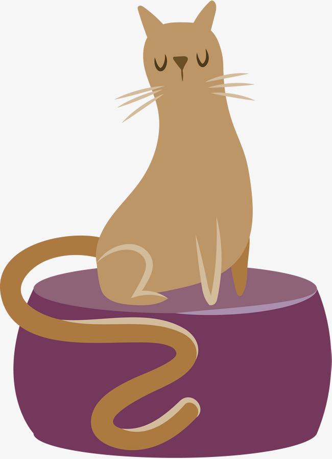 可爱猫咪的猫窝