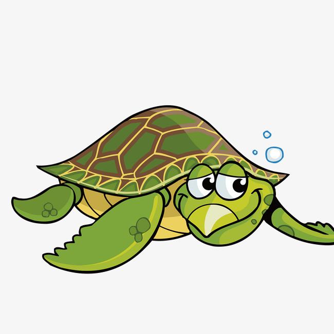 手绘卡通乌龟