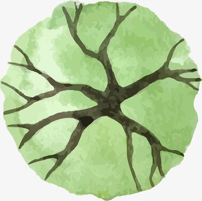 小清新水彩树枝