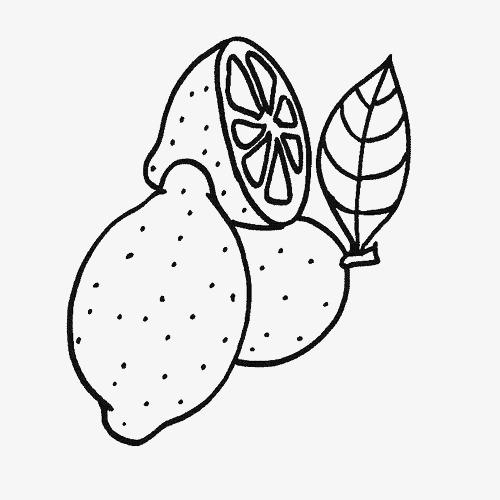 黑白食物柠檬简笔画图片