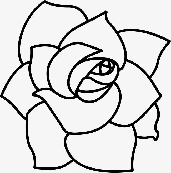 手绘盛开的玫瑰花瓣图