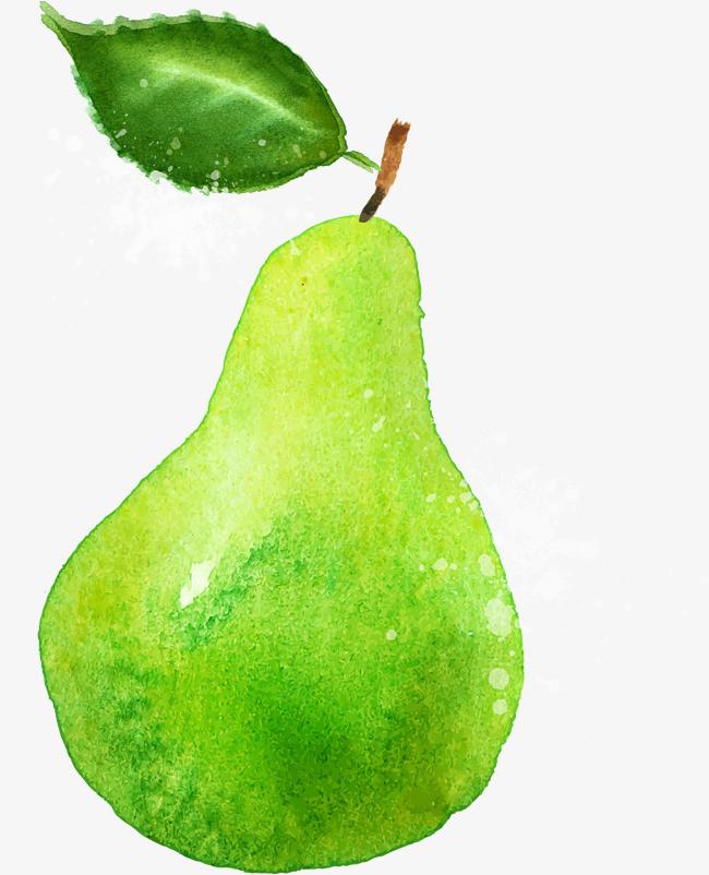 手绘绿色梨子
