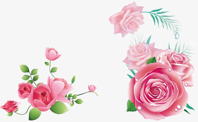玫瑰花图案png素材下载_高清图片png格式(编号:)-90