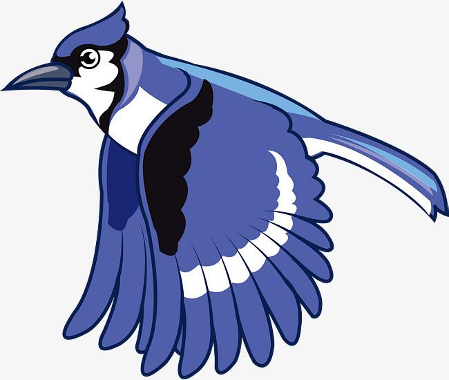 手绘啄木鸟