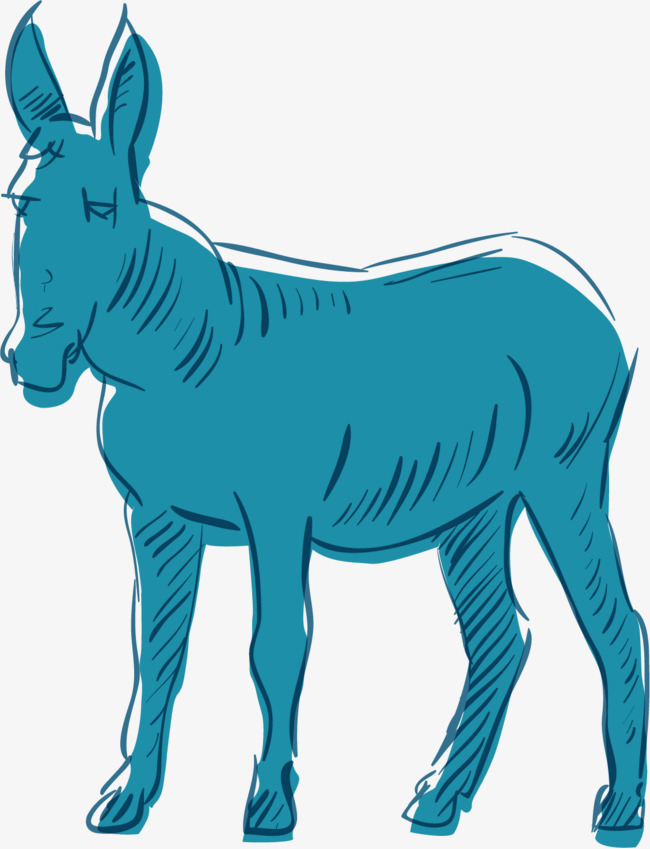 手绘蓝色驴子