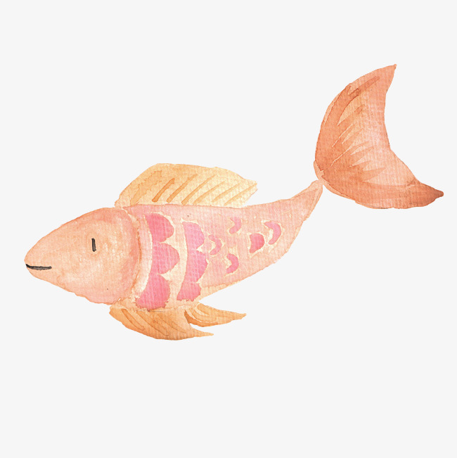 手绘金色鲤鱼