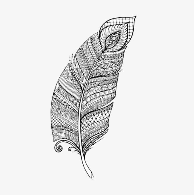 手绘变形羽毛
