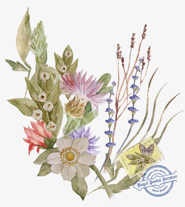 手绘明信片植物花卉素材图片免费下载 高清png 千库网 图片编号