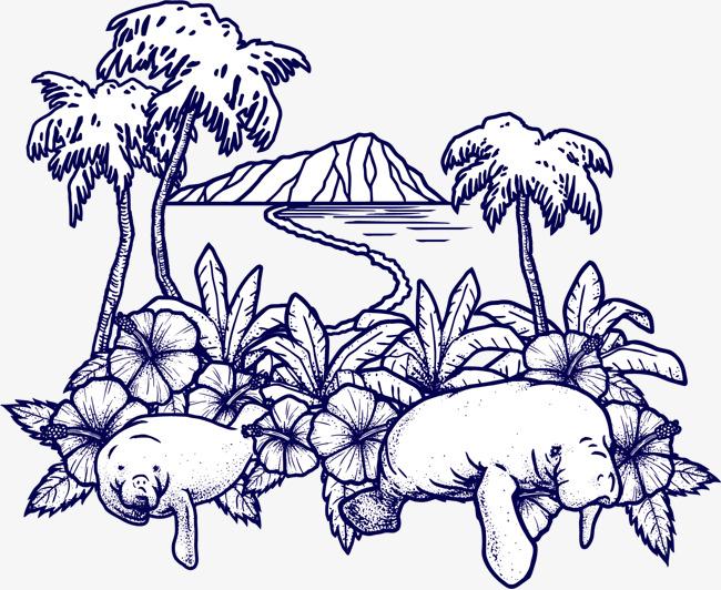 海狮小岛风光手绘图片