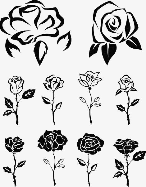 手绘线描玫瑰合集玫瑰花线描花卉线描花矢量图植物线条手绘黑色-手图片