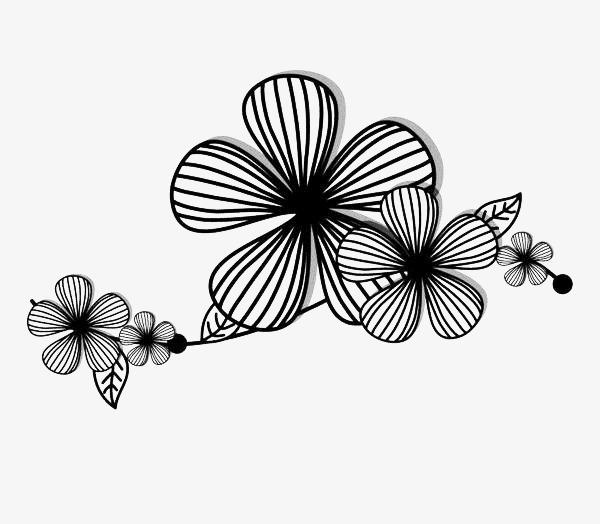 手绘黑色线条花卉线条黑色手绘花卉线描花矢量图植物线条手绘-手绘图片