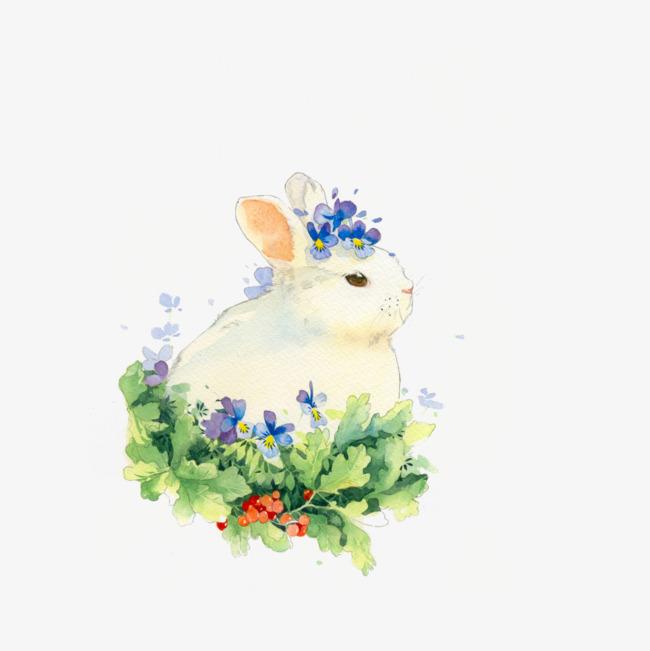 手绘唯美小兔子插画png素材下载_高清图片png格式(:)
