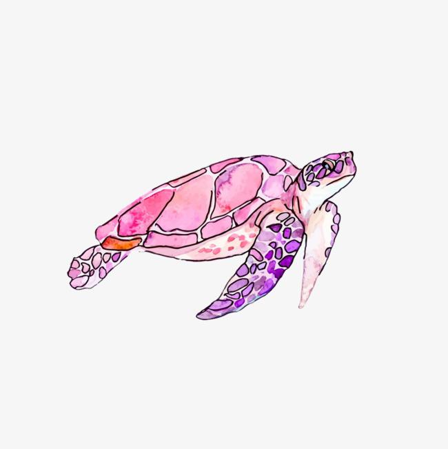 手绘水彩可爱海龟元素_png素材免费下载_ 1000*1000