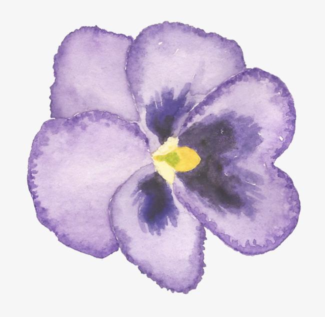 手绘小清新紫色丁香花朵