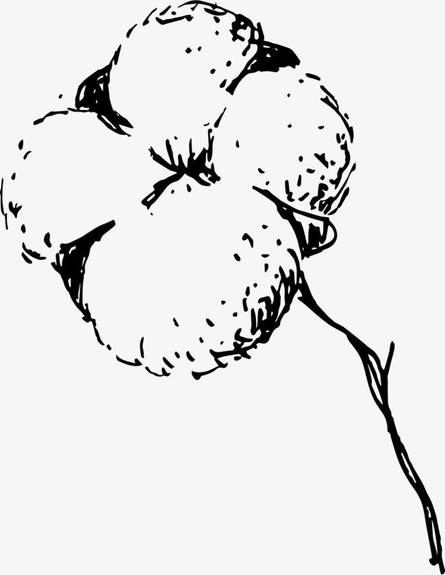 黑色手绘线条棉花