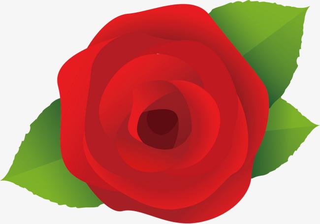 矢量玫瑰花图案png素材-90设计
