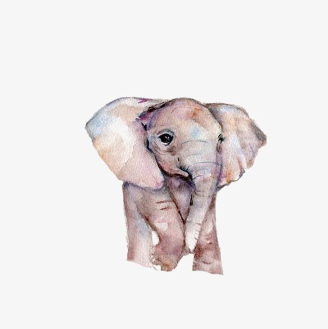 卡通可爱动物海报设计装饰大象