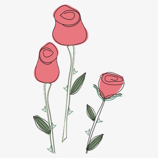 手绘玫瑰花插画png
