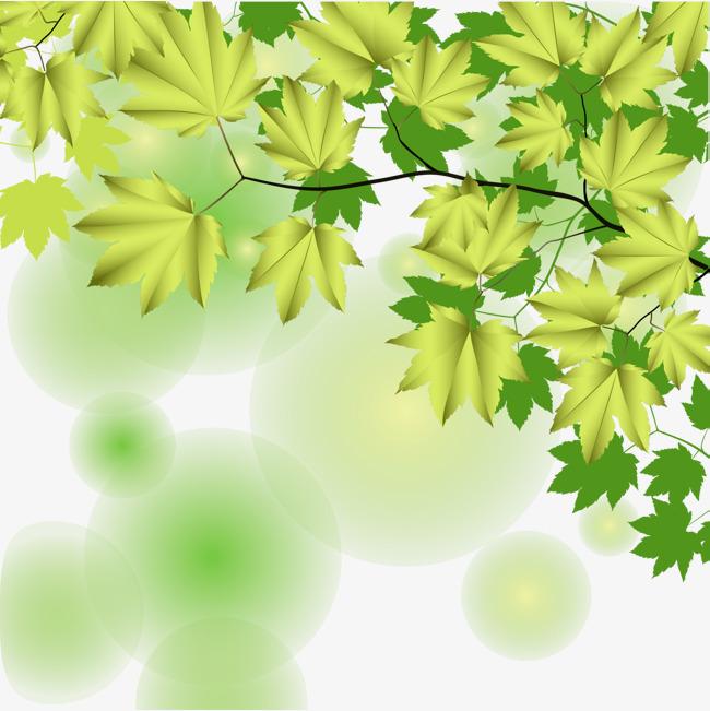 图片 > 【png】 绿色大树叶子装饰