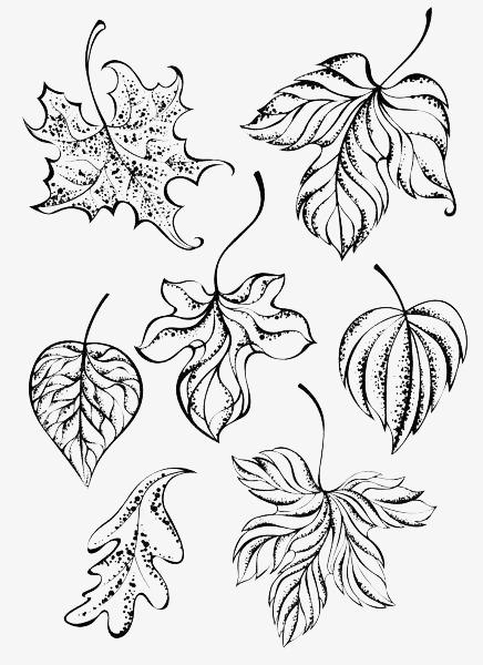 简约手绘线条树叶