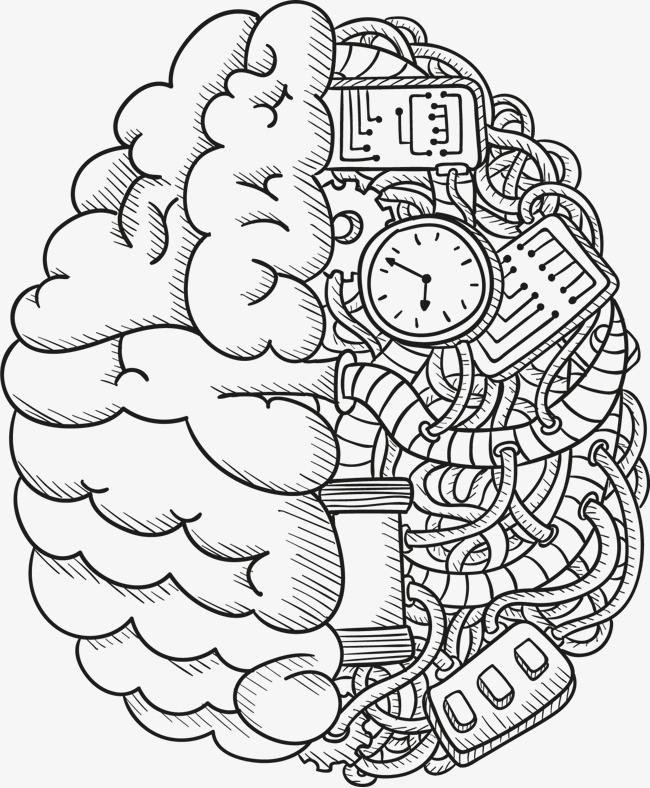 矢量手绘大脑