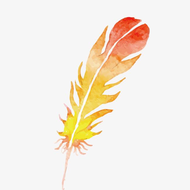 彩色手绘羽毛装饰