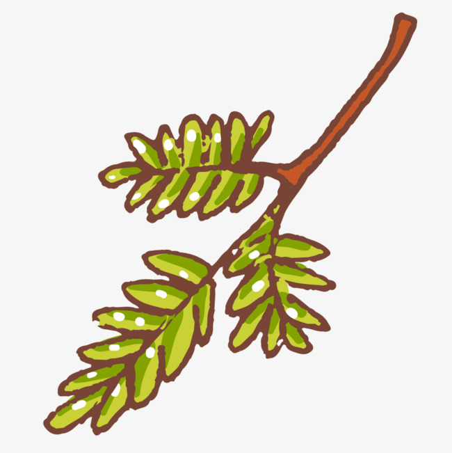 树枝绿叶手绘简图