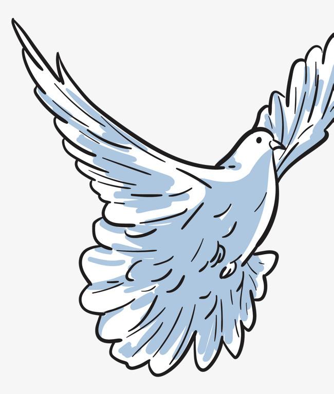 孩子羽翼丰满_羽翼丰满的矢量白鸽