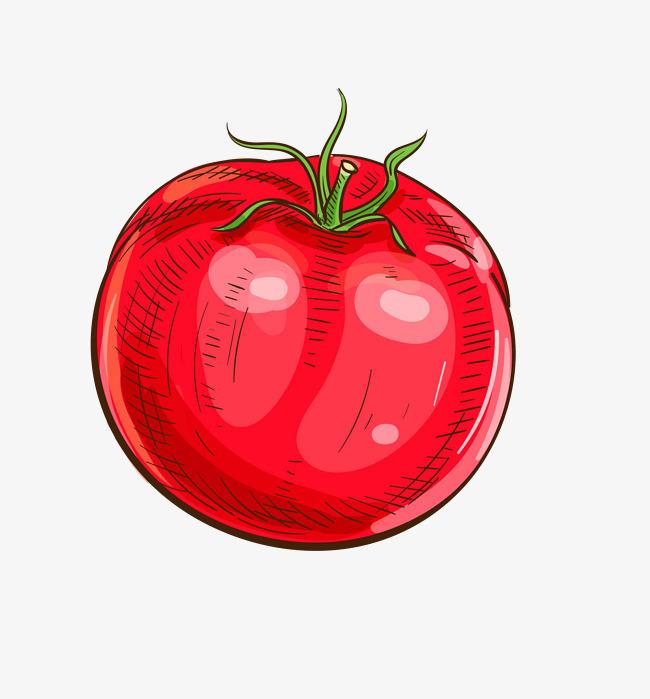红色西红柿手绘卡通免抠png
