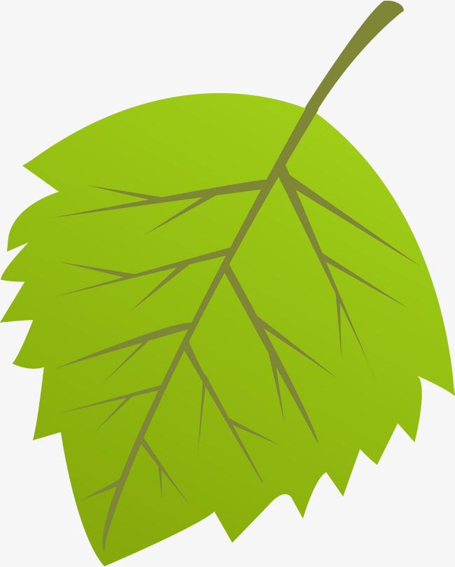 卡通绿色叶子矢量图