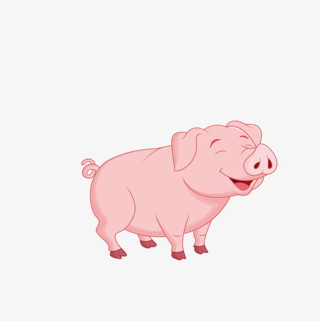 粉色的卡通小猪动物
