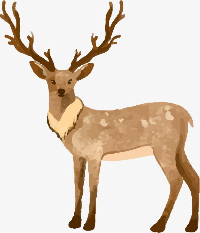 矢量手绘水彩梅花鹿