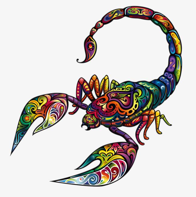 彩色的手绘蝎子装饰