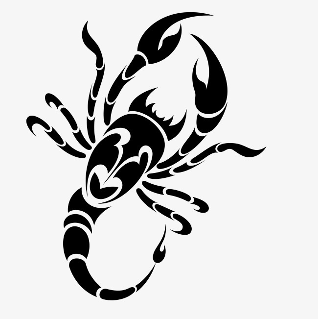 卡通手绘黑色蝎子