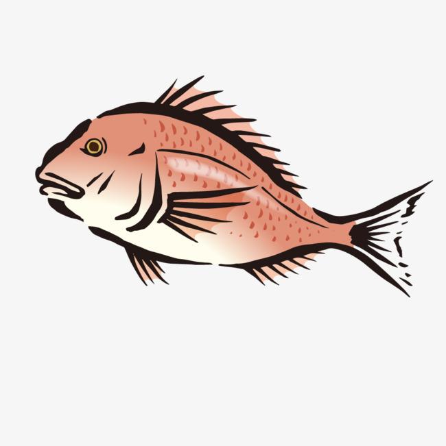 粉色的手绘小鱼装饰