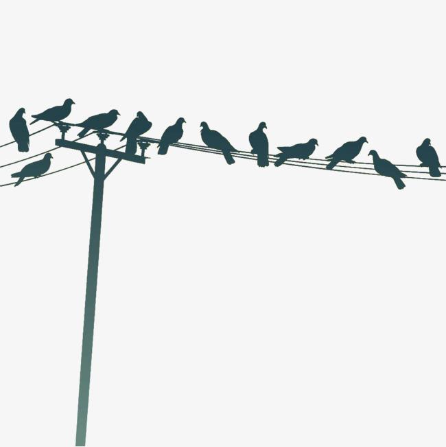 黑色手绘小鸟电线杆
