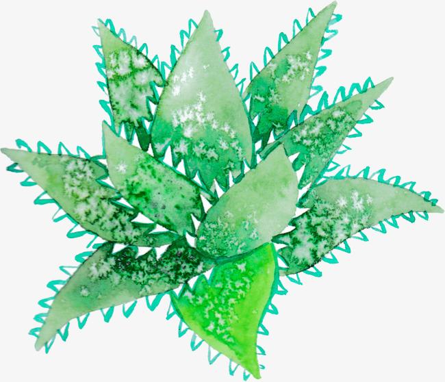 绿色手绘叶子元素