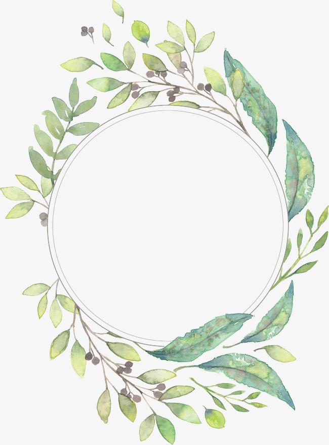 手绘植物圆框装饰