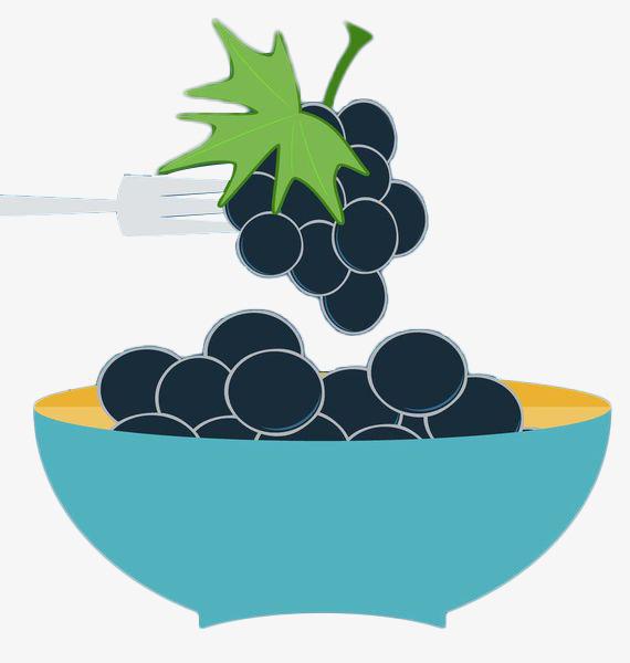 手绘扁平化葡萄提子