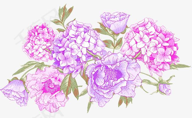 手绘粉色夜来香花球素材图片免费下载 高清png 千库网 图片编号9640385