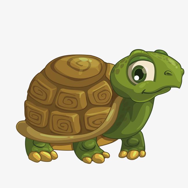 卡通手绘可爱的乌龟